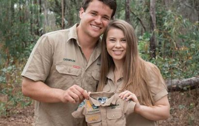 Bindi Irwin Shares Update on Her Pregnancy: Baby 'Is About the Size of a Hummingbird'