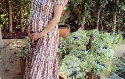 Pregnant Emma Roberts Was 'Very Excited' for Socially Distanced Garden Baby Shower, Source Says