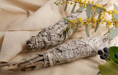 Why You Should Think Twice Before You Give People White Sage For Christmas