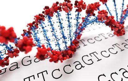 Cystinosis Genetics