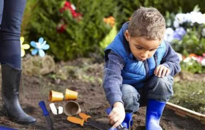 Teach Your Kids Something New With These Gardening Tools for Kids