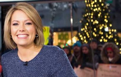 Pregnant! Today's Dylan Dreyer Expecting 3rd Child After Infertility Battle