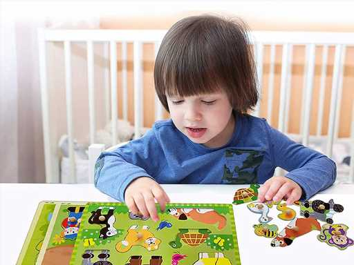 Exciting Peg Puzzles for Your Little One
