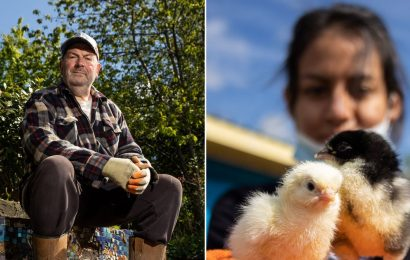 The magical city farm saving lives in a community